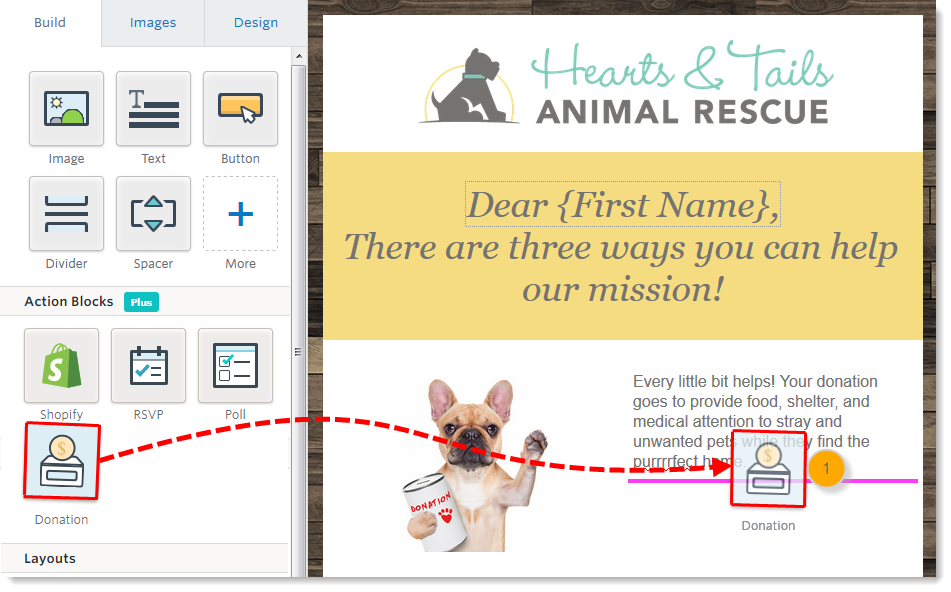 collect donations through an email with the third generation editor