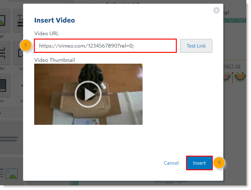 Insert a Video in an Email