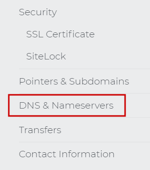 DNS & Nameservers menu choice