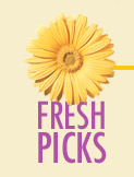 Fresh Picks