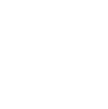 Pets of the Homeless