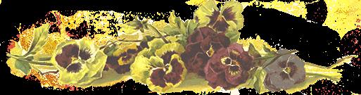 https://imgssl.constantcontact.com/letters/images/PT12202/Floral-v2.png