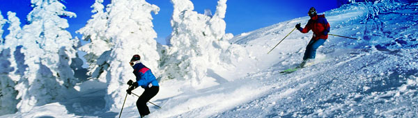 Snow Ski Scene