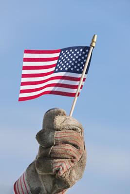 glove flag